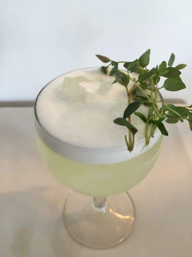 Drink med gin - Timian Gin Fizz - Moderne cocktails