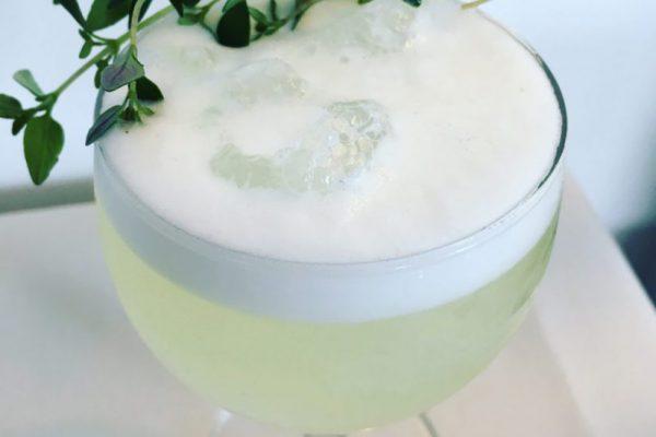 Gin fizz - Timian - Cocktails til fest - Lækre drinks