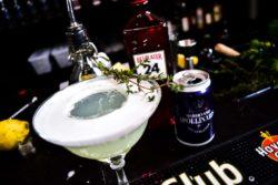 Gin Fizz Cocktails med Gin - Bedste Gin Cocktails Gin Fizz opskrift